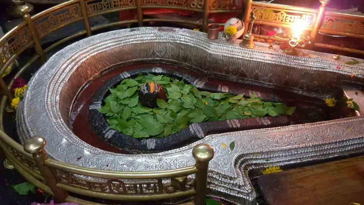 Bhimashankar1