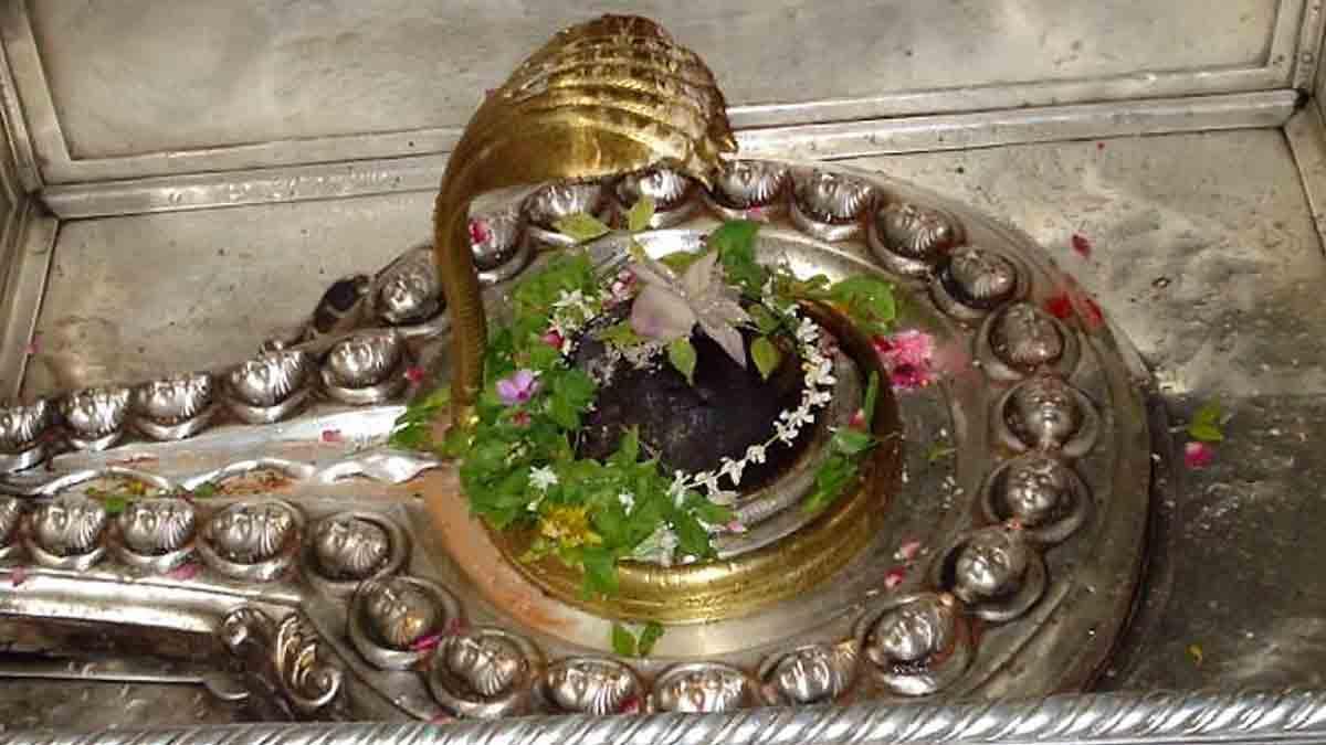 Kashi-vishwanath2