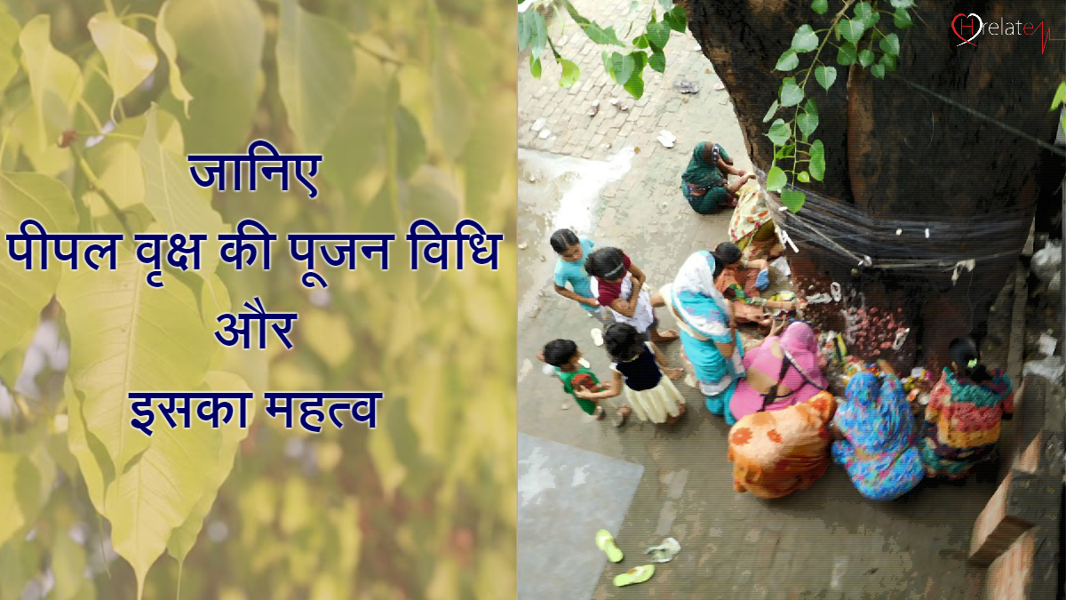 How to Worship Peepal Tree