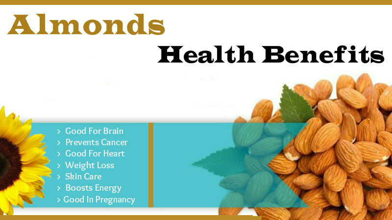 Almonds Health Benefits- Eat Daily - 66.0KB