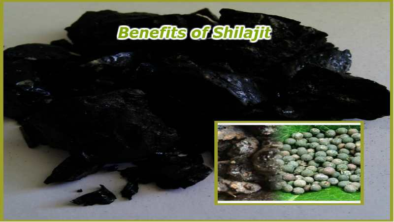 Shilajit-Benefits-in-Hindi