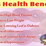 Benefits of Anjeer in Hindi: Aushdhiya Guno Se Bharpur