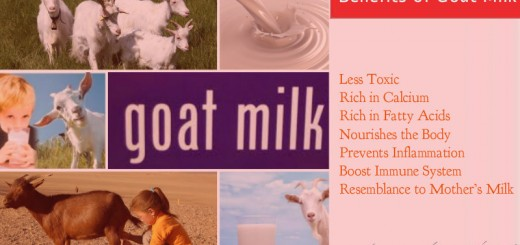 Health Benefits of Goat Milk
