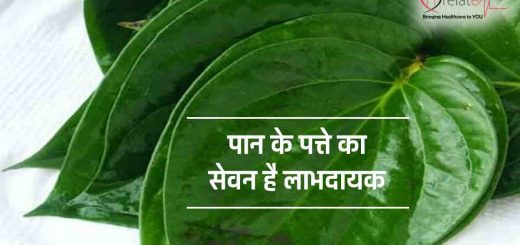Betel Leaf Benefits