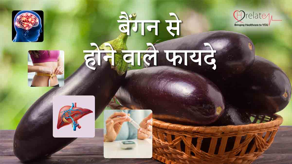 Brinjal Benefits in Hindi