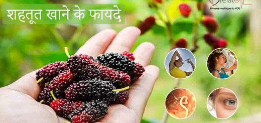 Mulberry Benefits in Hindi