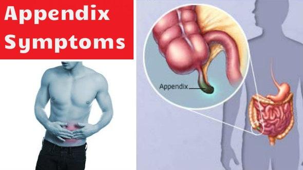 appendix symptoms: pet me dard ke lakshan, Human Body