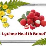 Lychee Benefits, Is Phal ke Swasthvardhak Laabh