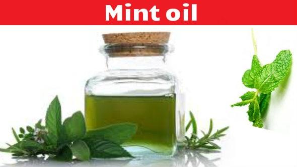 Mint Oil Benefits