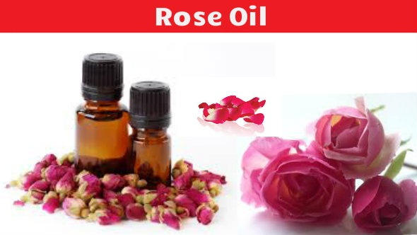 Rose Oil Benefits