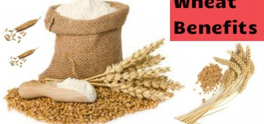 Wheat Benefits