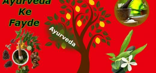Ayurveda in Hindi