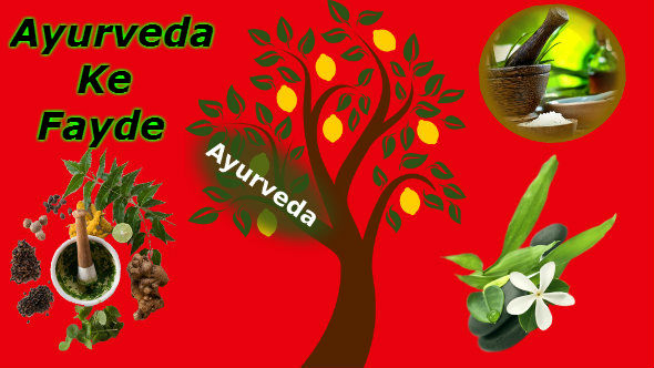 Ayurveda in Hindi