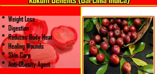 Kokum Benefits in Hindi