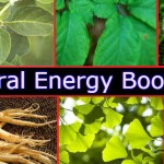 Janiye Natural Energy Boosters Se Jude Jaruri Tathaye