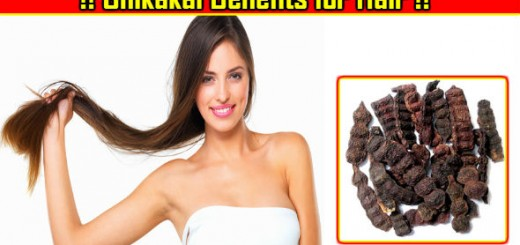Shikakai Benefits for Hair