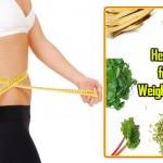 Herbs for Weight Loss: Kijiye Natural Tarike se Vajan Kam