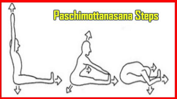 Paschimottanasana-Steps