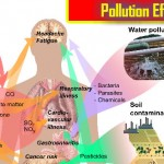 Paryavaran Pradushan (Pollution) Swasth ke Liye Haanikarak