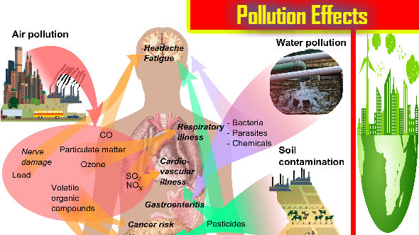 Pollution effects on environment essay