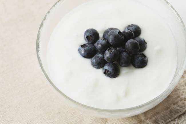 Yogurt-Dahi