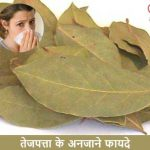 Bay Leaf Benefits in Hindi: Kai Guno Se Bharpur Tej Patta