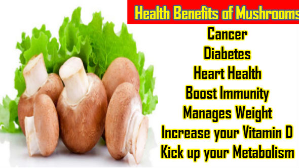 Health Benefits of Mushrooms in Hindi