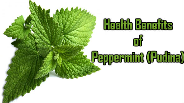 Health Benefits of Peppermint-Pudina