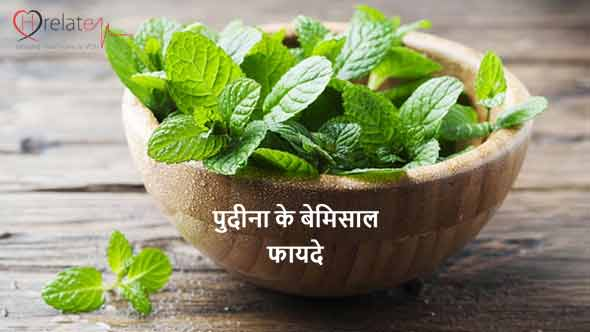 Peppermint Benefits in Hindi
