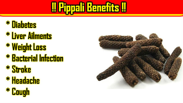 Pippali Benefits in Hindi