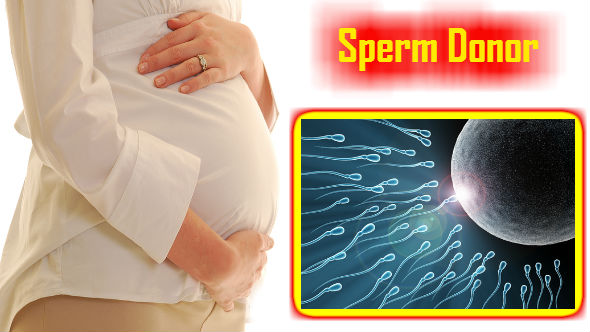 Sperm Donor-Pregnancy