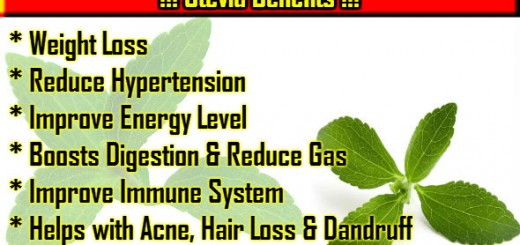 Stevia Benefits in Hindi