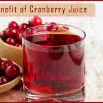 Cranberry Juice Benefits- Jane Iske Swasth Vardhak Gun