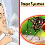 Dengue Fever in Hindi – Janiye Iske Lakshan, Karan aur Bachav