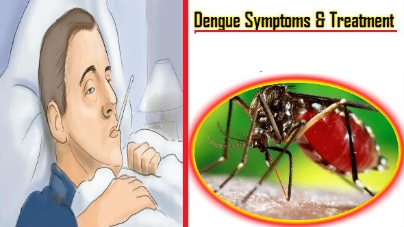 Dengue Symptoms and Treatment