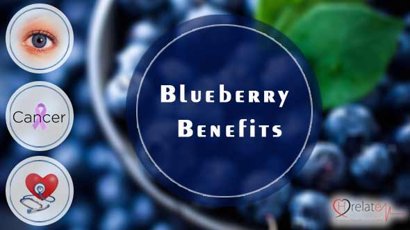 Blueberry Benefits in Hindi