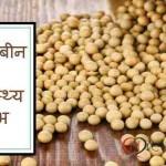 Health Benefits of Soybean in Hindi: Bimariyo Se Rakhe Dur