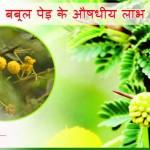 Acacia Tree in Hindi – Aushdhiya Guno se Paripurn Babool