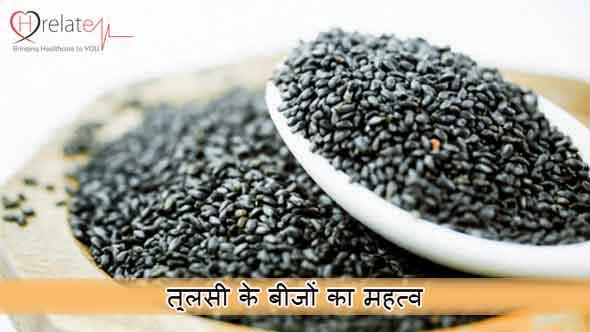 Basil Seeds in Hindi
