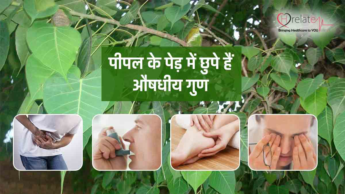 Benefits Of Peepal Tree In Hindi