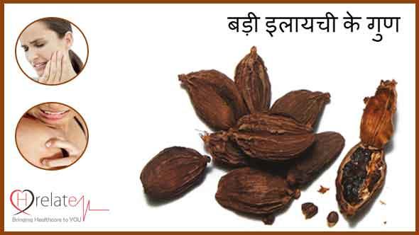 Black Cardamom Benefits in Hindi