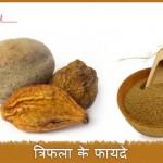Triphala Ke Fayde: अनेक रोगों में लाभकारी है त्रिफला