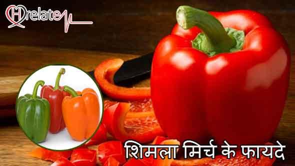Capsicum Benefits in Hindi