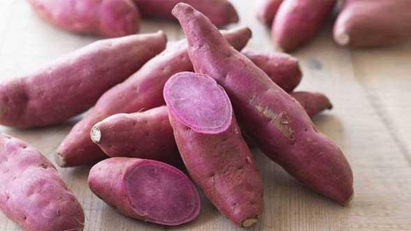 Sweet Potato Benefits in Hindi