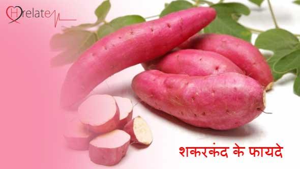 Sweet Potato in Hindi