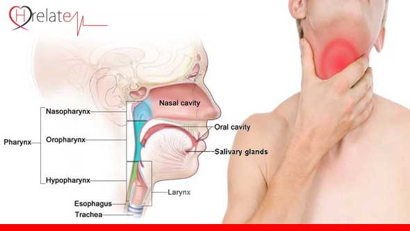 Throat Cancer in Hindi