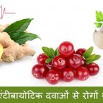 Natural Antibiotics in Hindi – Prakrati Se Prapt Aushdhiya