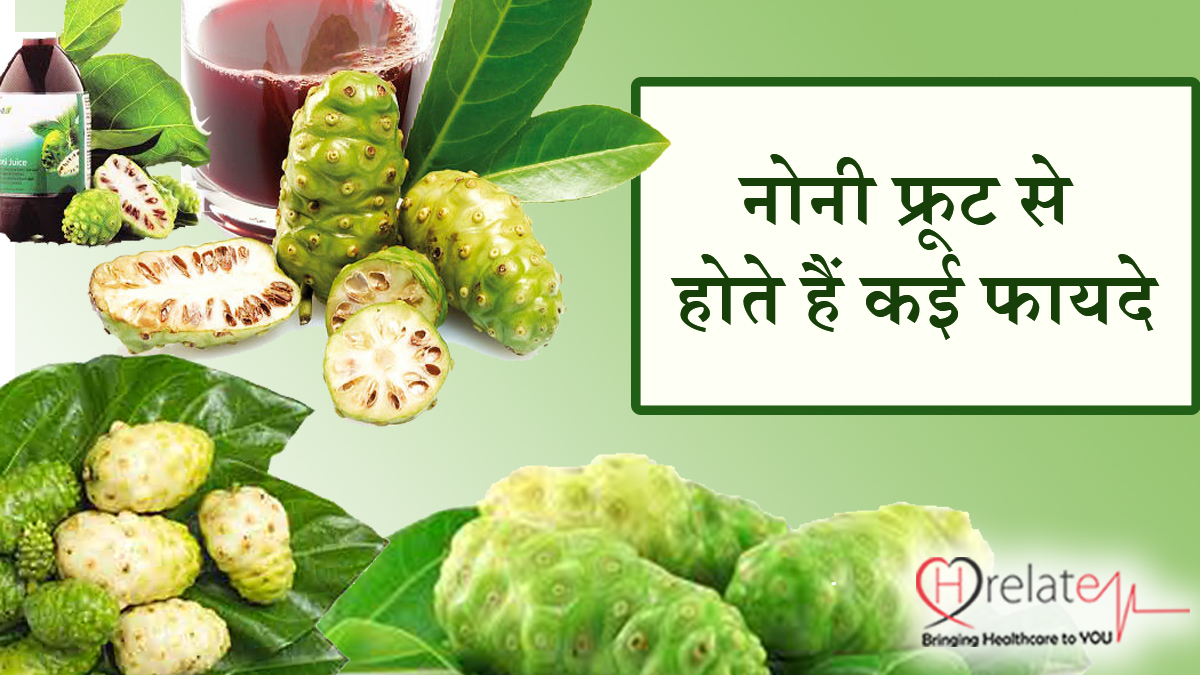 Noni Fruit In Hindi