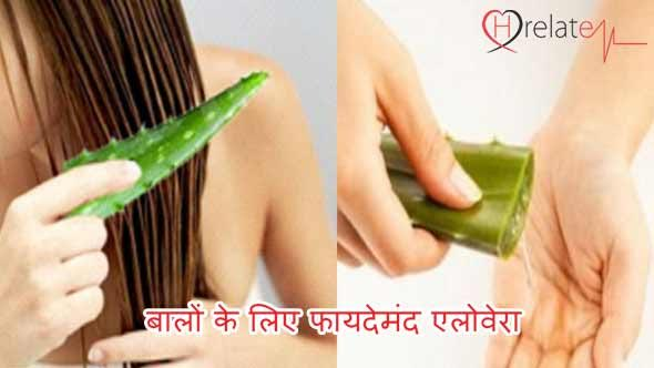 Aloe Vera for Hair in Hindi