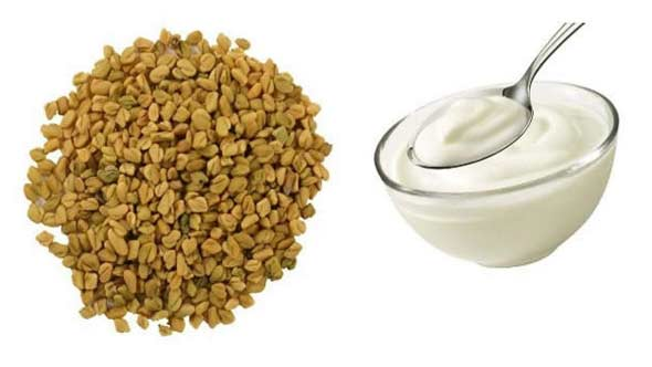 curd and fenugreek seeds